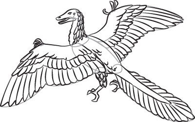 Как нарисовать динозавра Археоптерикс в 7 шагов