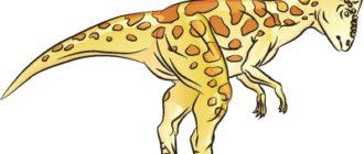 Как нарисовать динозавра Пахицефалозавр