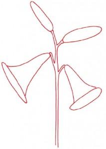 Как нарисовать цветы Лилии поэтапно в 5 шагов. Шаг 1