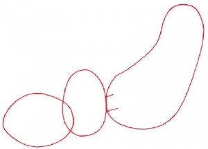 Как нарисовать собаку поэтапно в 5 шагов. Шаг 1