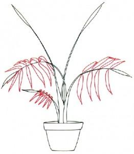 Как нарисовать Пальму поэтапно в 5 шагов. Шаг 2
