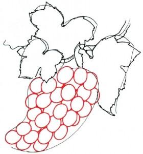 Как нарисовать гроздь винограда поэтапно в 5 шагов. Шаг 3