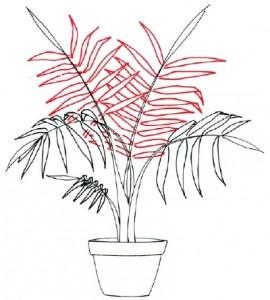 Как нарисовать Пальму поэтапно в 5 шагов. Шаг 3