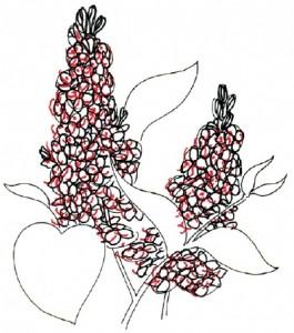 Как нарисовать цветы Сирени поэтапно в 5 шагов. Шаг 3
