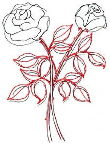 Как нарисовать Розы поэтапно в 5 шагов. Шаг 3