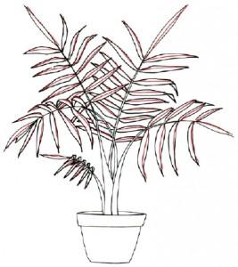 Как нарисовать Пальму поэтапно в 5 шагов. Шаг 4
