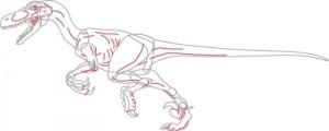 Как нарисовать Велоцираптор поэтапно в 6 шагов. Шаг 5