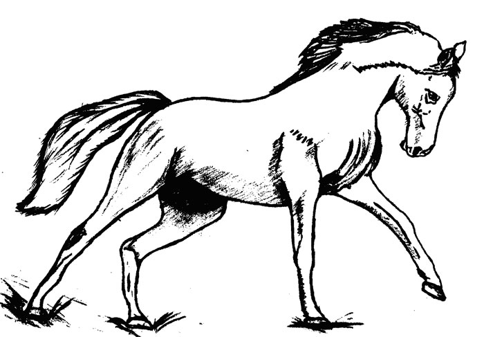 Как нарисовать Лошадь поэтапно в  4 шага