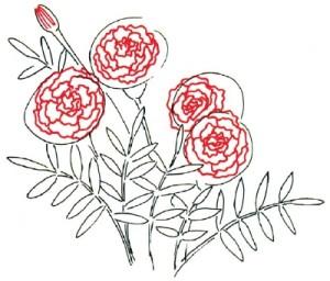Как нарисовать Цветы Календулы поэтапно в 5 шагов 3