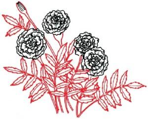 Как нарисовать Цветы Календулы поэтапно в 5 шагов 5