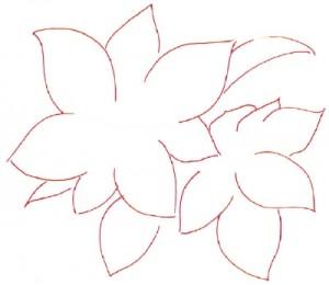 Как нарисовать цветы поэтапно. Молочай (Пуансеттия) в 5 шагов 2