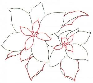 Как нарисовать цветы поэтапно. Молочай (Пуансеттия) в 5 шагов 3