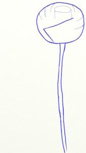 Как нарисовать Розу поэтапно в 5 шагов 3
