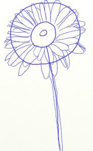 Как нарисовать ромашки поэтапно в 5 шагов 4
