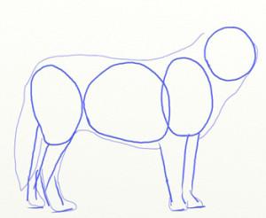 Как нарисовать Волка поэтапно в 6 шагов 3
