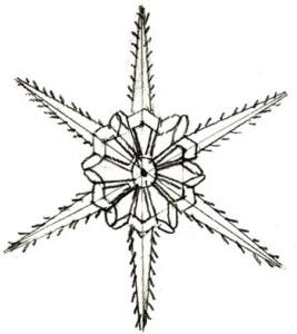 Как нарисовать Снежинку поэтапно в 5 шагов 5