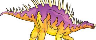 Как нарисовать динозавра Дацентрур