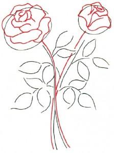 Как нарисовать Розы поэтапно в 5 шагов. Шаг 2