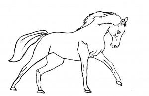 Как нарисовать Лошадь поэтапно в 4 шага 5