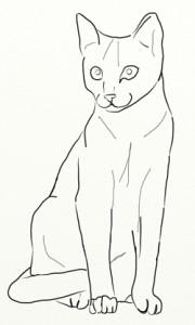 Как нарисовать Кошку поэтапно в 5 шагов 5