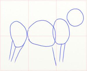 Как нарисовать Волка поэтапно в 6 шагов 2